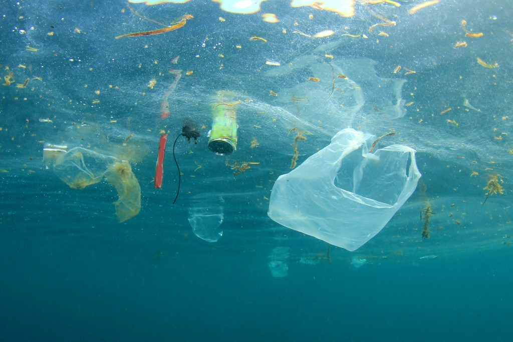 Plastic pollution floating in the water