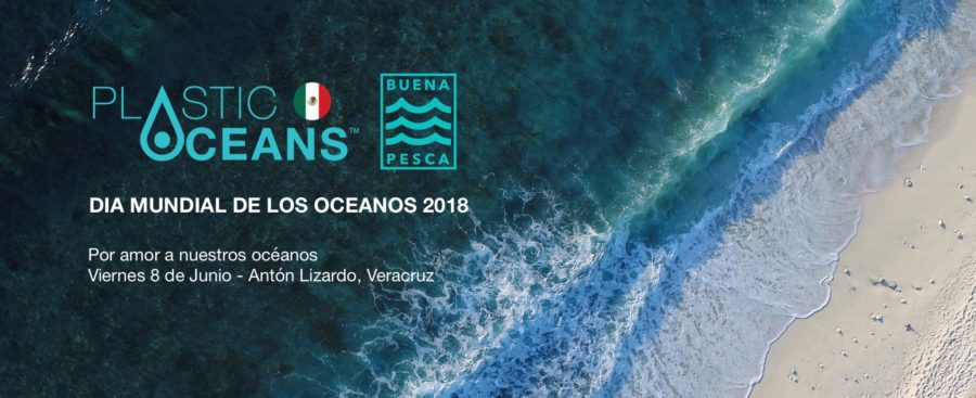 Beach cleanup for World Oceans Day
