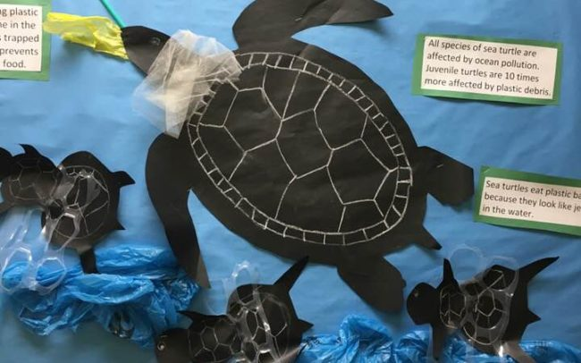 Pineland Learning Center turtle os the wall of shame