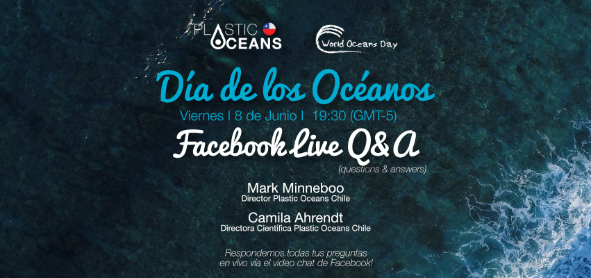 World Oceans Day Q & A with Plastic Oceans Chile