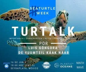 Turtalk: Sea Turtle Week
