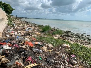 Coastal Cleanup Day in Campeche, Mexico