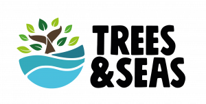 Trees & Seas logo