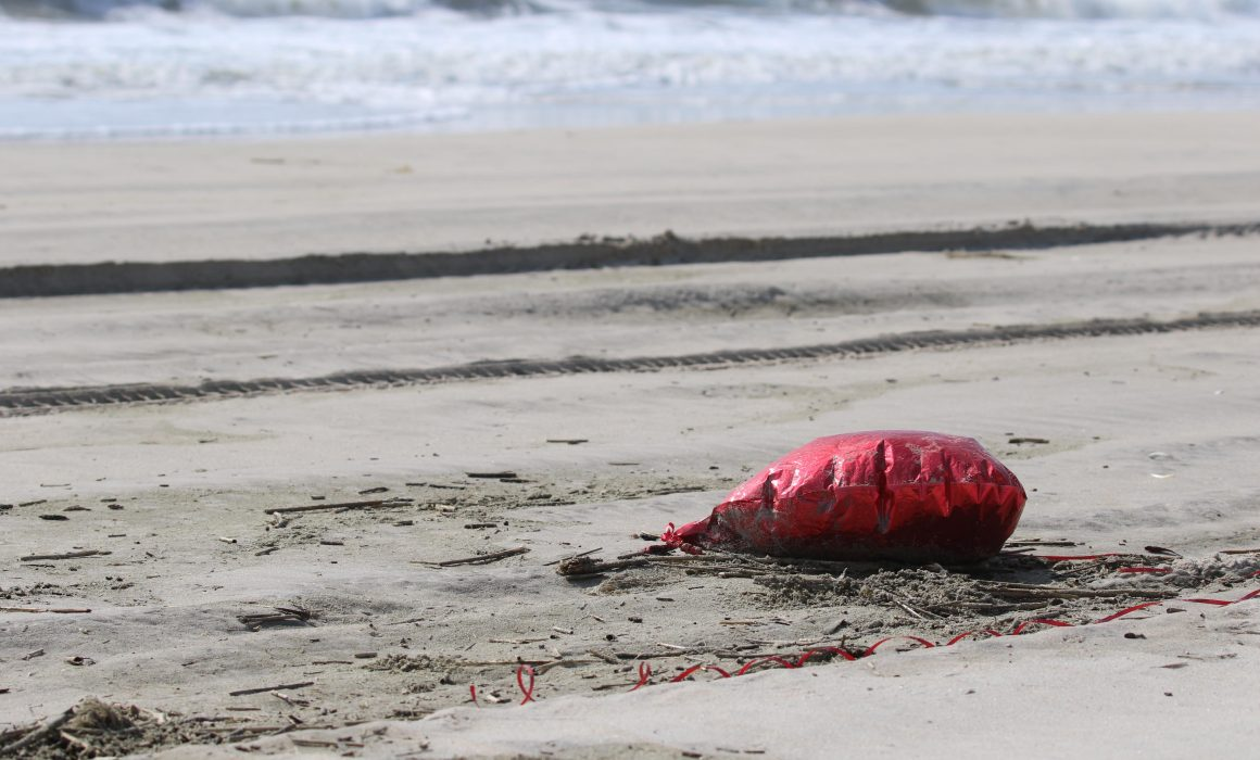 Valentine's Day: A deflated mylar balloon on the beach surf line on the Assateague OSV (over sand vehicle beach) in Assateague Island, Maryland April 18, 2019. (Ann Richardson)]